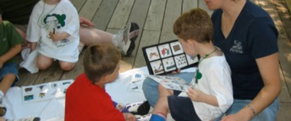 image for Adaptations, Strategies and Resources for Working with Children with Disabilities